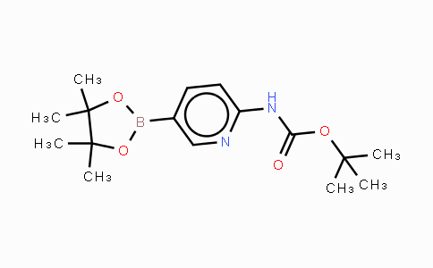 910462-31-6 | 2-(tert-Butoxycarbonylamino)pyridine-5-boronic acid, pinacol ester