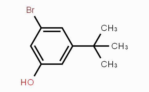 1047661-26-6 | 3-bromo-5-tert-butylphenol