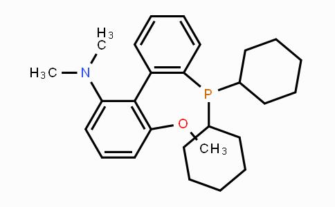 1160556-61-5 | 2'-(dicyclohexylphosphino)-6-methoxy-N,N-dimethylbiphenyl-2-amine