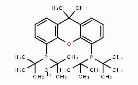 856405-77-1 | 9,9-Dimethyl-4,5-bis(di-tert-butylphosphino)xanthene