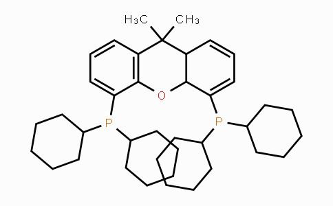 940934-47-4 | 4,5-Bis(dicyclohexylphosphino)-9,10a-dihydro-9,9-dimethyl-8aH-xanthene