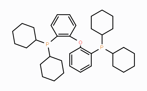 434336-16-0 | Bis(2-dicyclohexylphosphinophenyl)ether