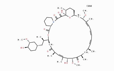 53123-88-9 | Rapamycin