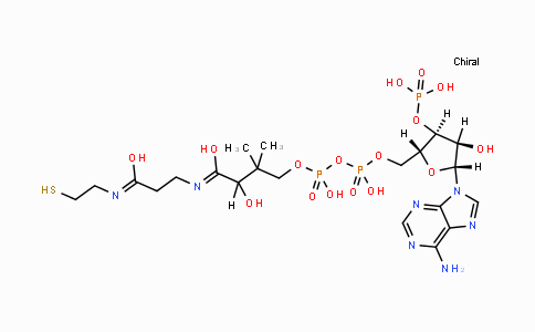 85-61-0 | Coenzyme A