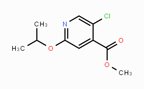 2121515-27-1 | Methyl 5-chloro-2-(propan-2-yloxy)pyridine-4-carboxylate