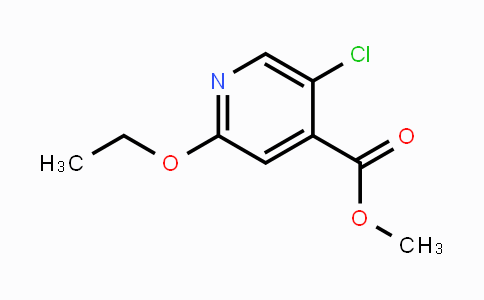 MC449651 | 2056110-54-2 | Methyl 5-chloro-2-ethoxypyridine-4-carboxylate