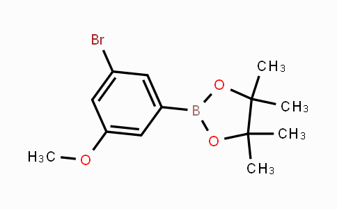 401797-04-4 | 3-Bromo-5-methoxyphenylboronic acid pinacol ester