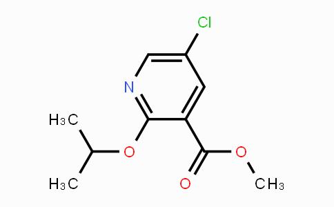 1826110-05-7 | Methyl 5-chloro-2-(propan-2-yloxy)pyridine-3-carboxylate