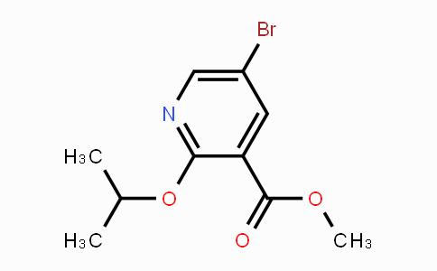 MC450401   1781982-05-5   Methyl 5-bromo-2-propan-2-yloxypyridine-3-carboxylate