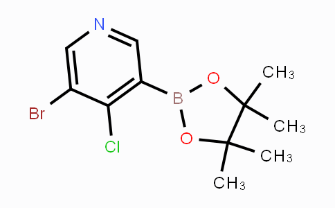 2121514-13-2 | 5-Bromo-4-chloropyridine-3-boronic acid pinacol ester