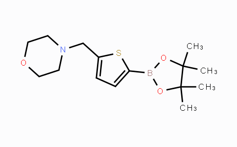 DY450678 | 950603-39-1 | 5-(4-Morpholinylmethyl)thiophene-2-boronic acid pinacol ester