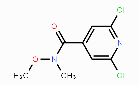 MC451384 | 848498-98-6 | 2,6-Dichloro-N-methoxy-N-methylisonicotinamide