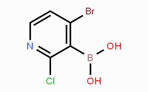 MC453024 | 2121511-27-9 | 4-Bromo-2-chloropyridine-3-boronic acid