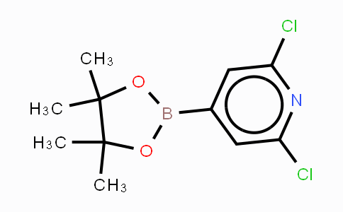 408492-27-3   2,6-Dichloropyridine-4-boronic acid, pinacol ester