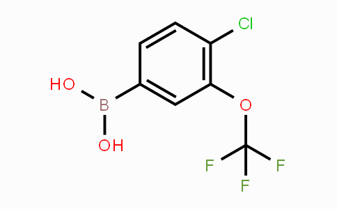 902757-07-7 | 4-Chloro-3-(trifluoromethoxy)phenylboronic acid