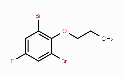 1242070-99-0 | 2,6-Dibromo-4-fluoro-1-propoxybenzene