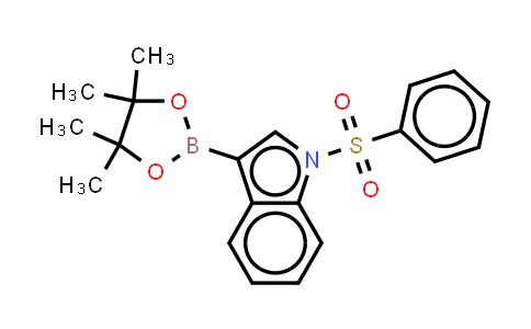870717-93-4 | 1-(Phenylsulfonyl)-3-lndoleboronic acid pinacol ester