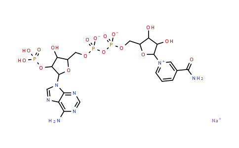 DY457144 | 1184-16-3 | beta-Nicotinamide adenine dinucleotide phosphate sodium salt