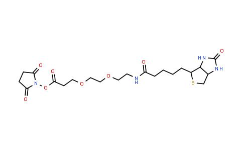 596820-83-6 | Biotin-PEG2-NHS ester