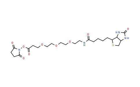 1253286-56-4   Biotin-PEG3-NHS ester