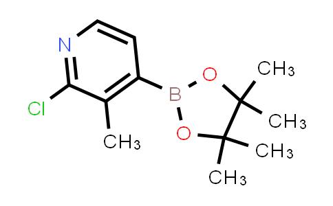 1010101-06-0 | 2-CHLORO-3-METHYLPYRIDINE-4-BORONIC ACID PINACOL ESTER