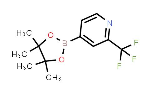 1036990-42-7   2-(TRIFLUOROMETHYL)PYRIDINE-4-BORONIC ACID PINACOL ESTER