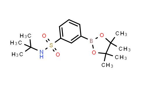 DY460954 | 706820-95-3 | 3-(tert-butylamino)sulfonyl-phenylboronic acid pinacol ester
