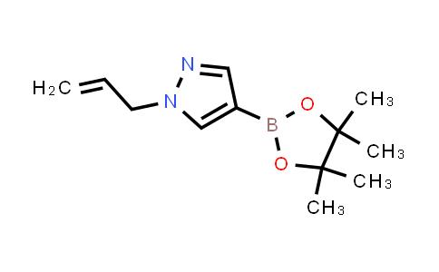 1000801-78-4 | 1H-Pyrazole, 1-(2-propen-1-yl)-4-(4,4,5,5-tetramethyl-1,3,2-dioxaborolan-2-yl)-