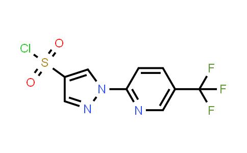 1006441-36-6 | 1H-Pyrazole-4-sulfonyl chloride, 1-[5-(trifluoromethyl)-2-pyridinyl]-
