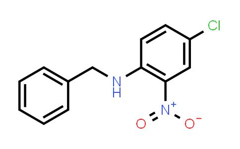 10066-18-9   N-Benzyl-4-chloro-2-nitroaniline