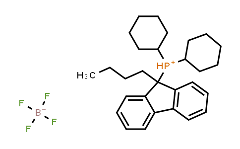 1007311-98-9 | Dicyclohexyl(9-butylfluoren-9-yl)phosphonium tetrafluoroborate