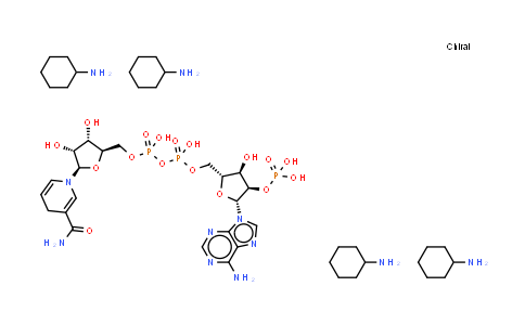 100929-71-3 | NADPH (tetracyclohexanamine)