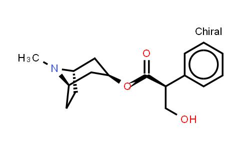 101-31-5 | L-Hyoscyamine