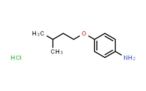 10141-51-2   p-(Isoamyloxy)aniline hydrochloride