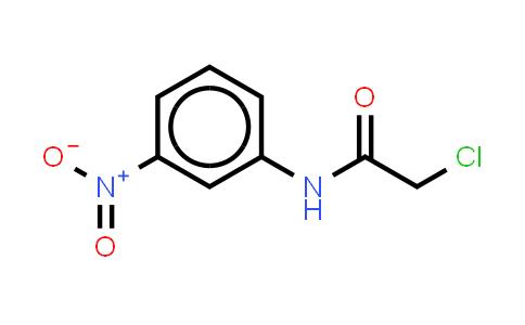 10147-71-4 | 2-Chloro-n-(3-nitrophenyl)acetamide