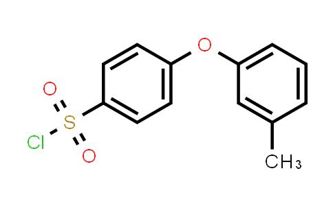 1016513-15-7 | 4-(m-Tolyloxy)benzenesulfonyl chloride