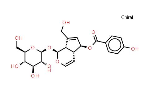 1016987-87-3 | Derwentioside B