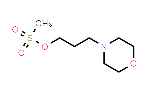 1018895-28-7 | 3-Morpholinopropyl methanesulfonate