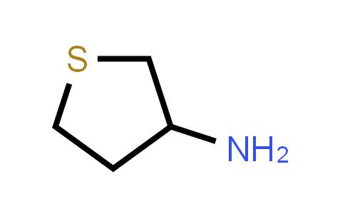 101993-01-5 | Tetrahydrothiophen-3-amine