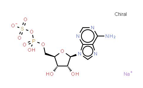 102029-95-8 | Adenosine 5'-phosphosulfate (sodium salt)