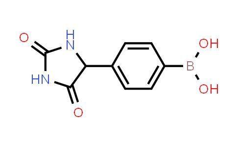 1030287-04-7 | [4-(2,5-Dioxoimidazolidin-4-yl)phenyl]boronic acid