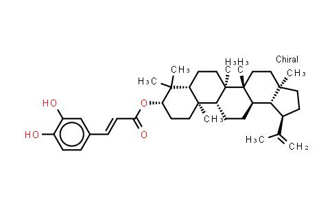 103917-26-6   Caffeoxylupeol