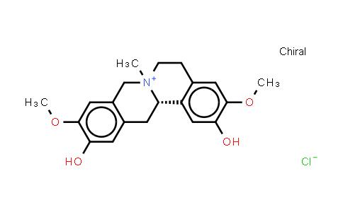 104112-82-5   Phellodendrine (chloride)