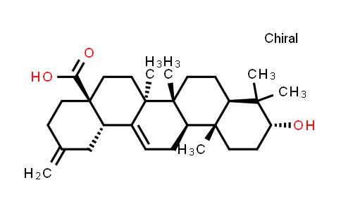 104777-61-9 | 30-Noroleana-12,20(29)-dien-28-oic acid,3-hydroxy-,(3alpha)-