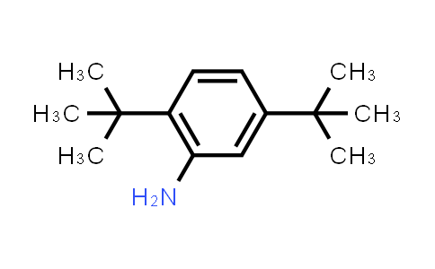 21860-03-7   2,5-Di-tert-butylaniline