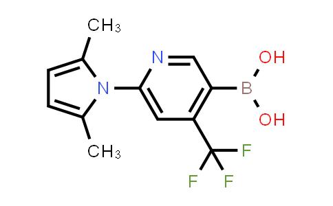 2209066-06-6 | (6-(2,5-Dimethyl-1H-pyrrol-1-yl)-4-(trifluoromethyl)pyridin-3-yl)boronic acid